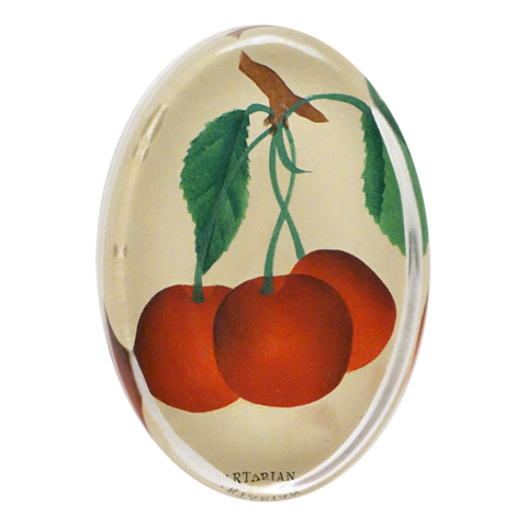 https://www.janeleslieco.com/products/john-derian-early-richmond-cherries-oval-paperweight