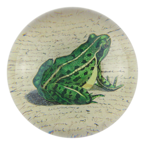 https://www.janeleslieco.com/products/john-derian-frog-prince-dome-paperweight