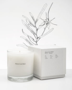 https://www.janeleslieco.com/products/maison-louis-marie-no-10-aboukir-candle