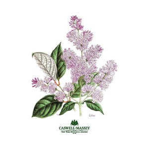https://www.janeleslieco.com/products/caswell-massey-nybg-lilac-50ml