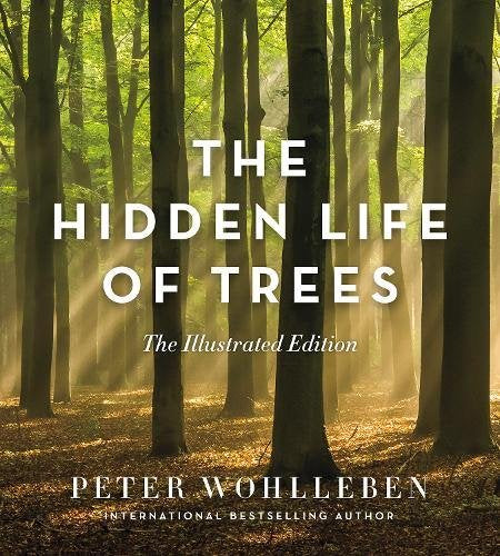 https://www.janeleslieco.com/products/the-hidden-life-of-trees-the-illustrated-edition