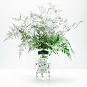 https://www.janeleslieco.com/products/penhaligons-english-fern