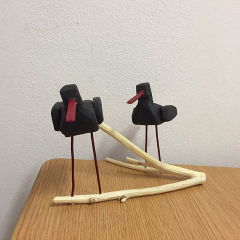 'Two Black Oystercatchers' - Daan Samuels