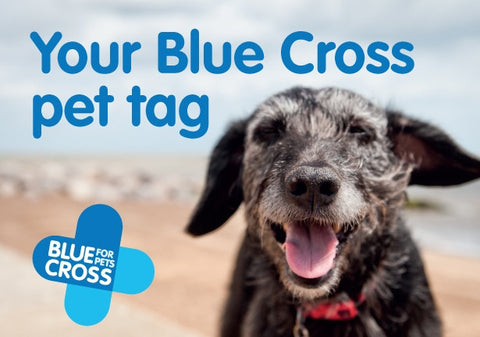 Blue Cross Charity Pet ID Tag