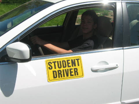 Image result for student driver magnet
