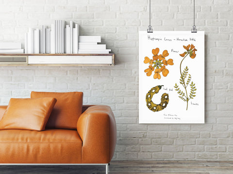 Vintage flower wall chart
