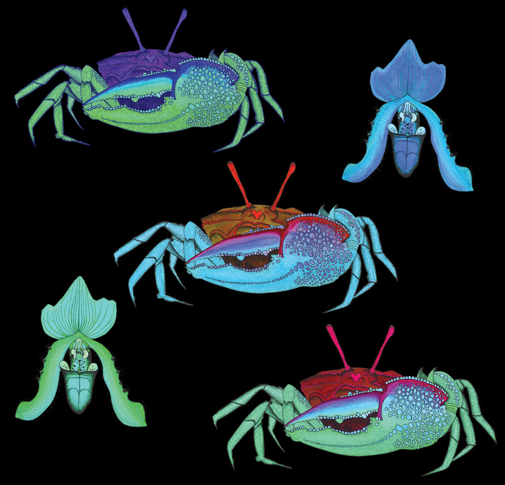Crab wallpaper on a black background with illustrated bright alien like crabs in psychedelic colors