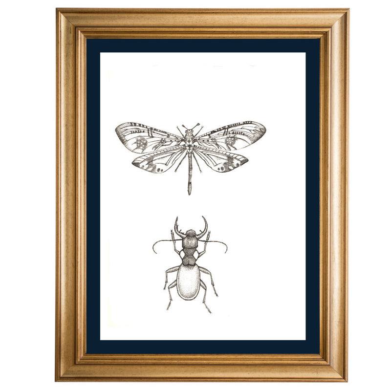 Beetle and Dragonfly Original Illustration - B&W
