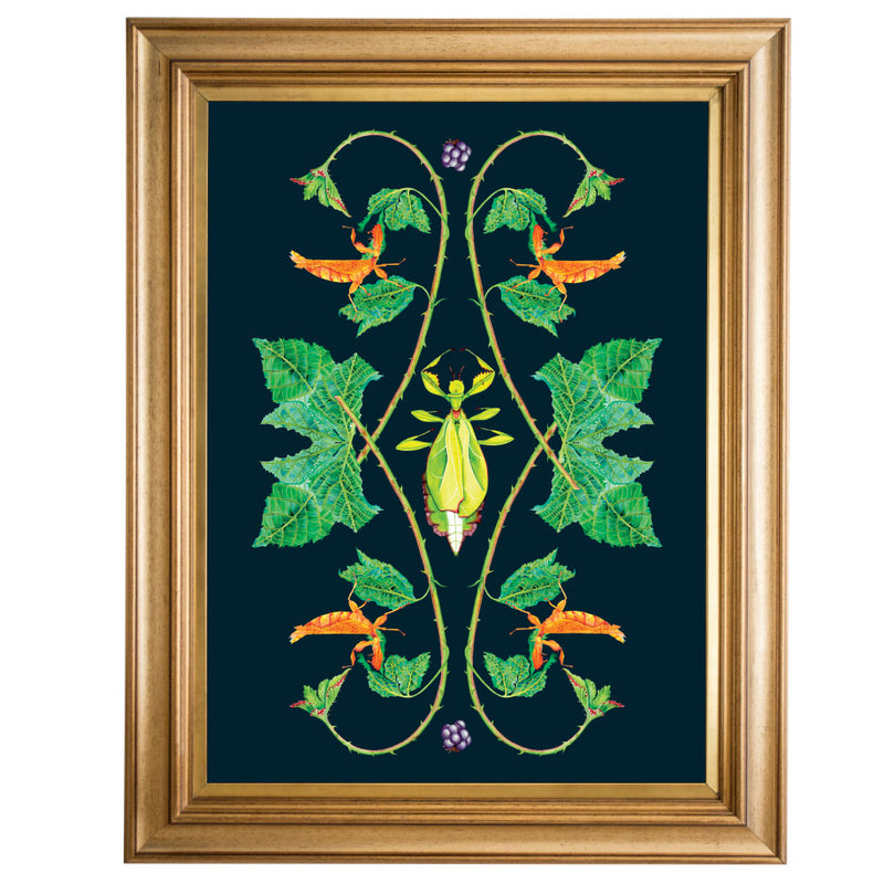 Leaf Insect Giclee Print