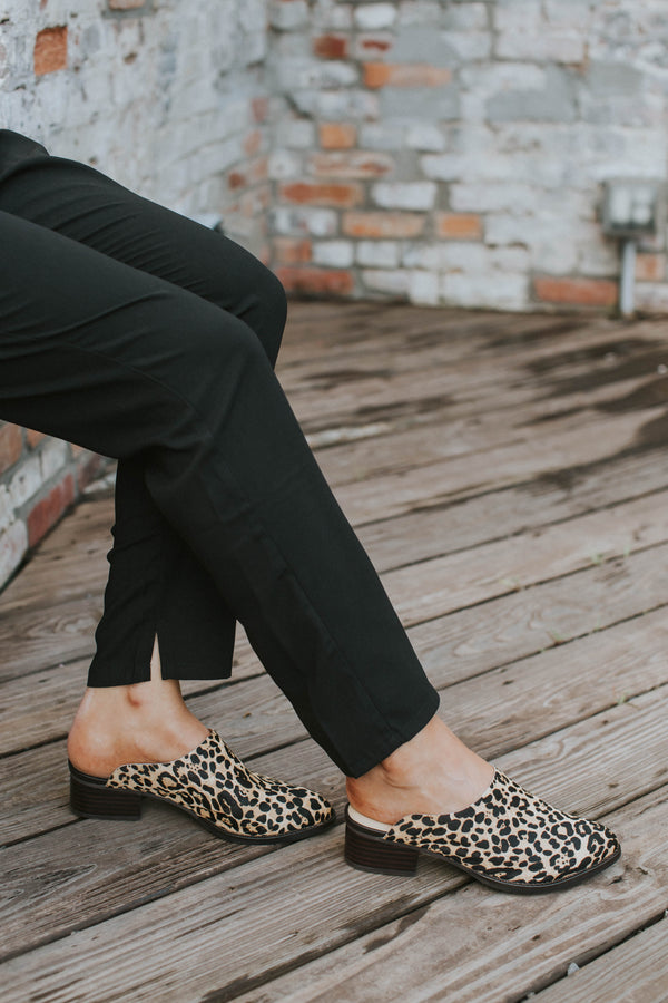 Damsel Printed Mule, Leopard | Sbicca | Quality Name Brand Shoes