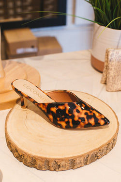 Ojai Pointed Kitten Heel, Brown Tort | Coconuts By Matisse
