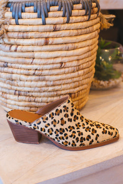 Camelot Slide On Mule, Leopard | Coconuts By Matisse