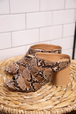 Trendy Snake Shoes for Women