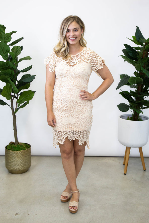 Party Pearl Lace Dress, Blush