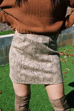 Somebody To You Snake Print Mini Skirt, Brown
