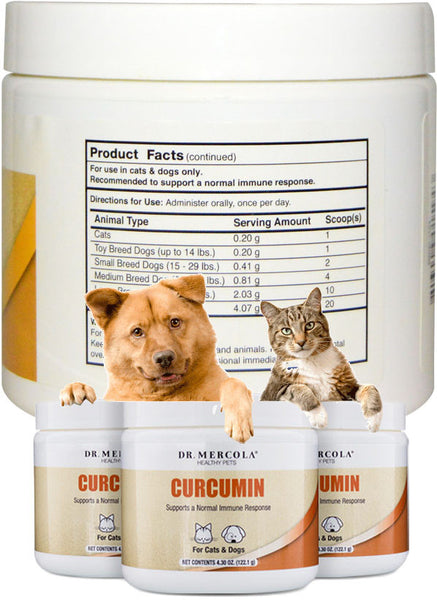 Curcumin for Pets - Supports A Normal Immune Response by Dr. Mercola