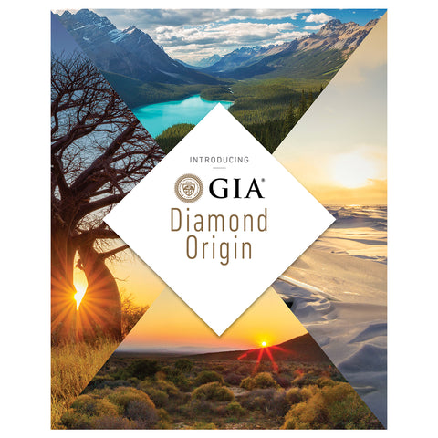 Diamond Origin Retailer Brochure