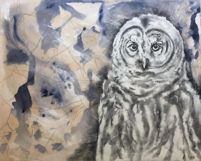 Original mixd media painting and drawing of a Barred Owl. Encaustic top coat. By Heidi Denessen