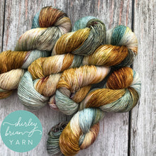 shirley brian yarn merino single sock aslan