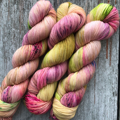 Shirley brian yarn Scuttle Sock - the tulips you bring