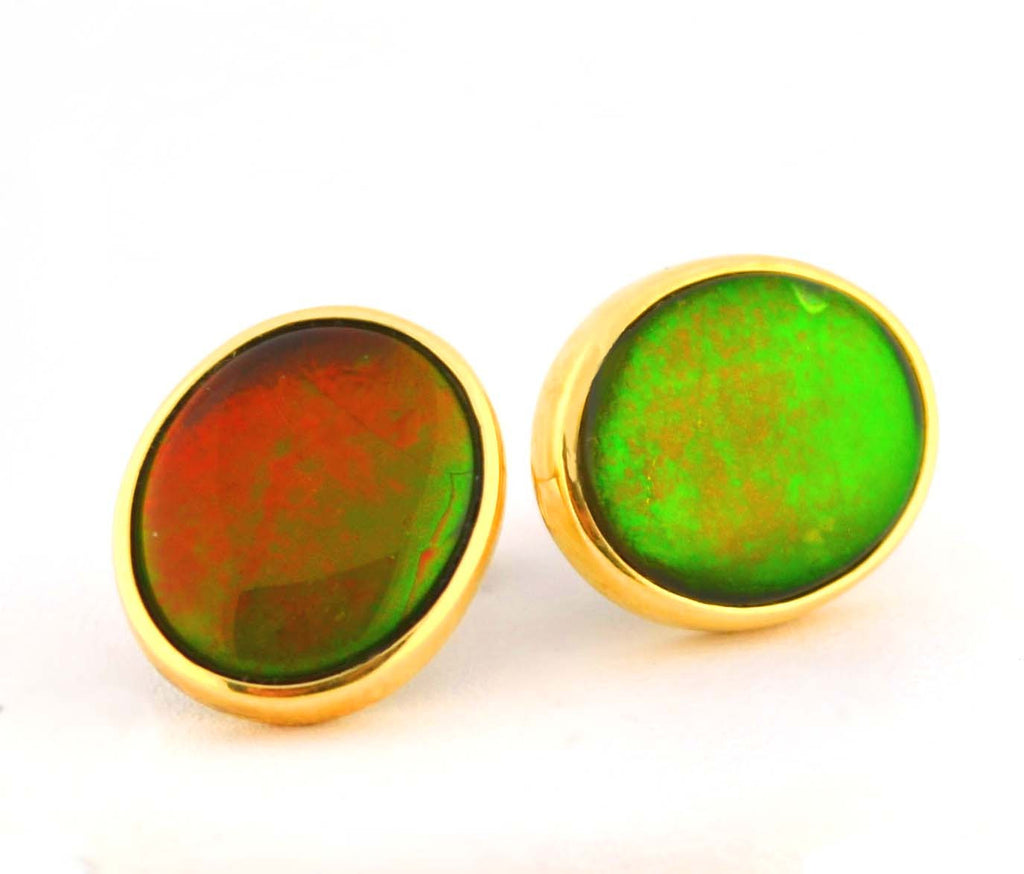 E-381 Ammolite Post Earrings