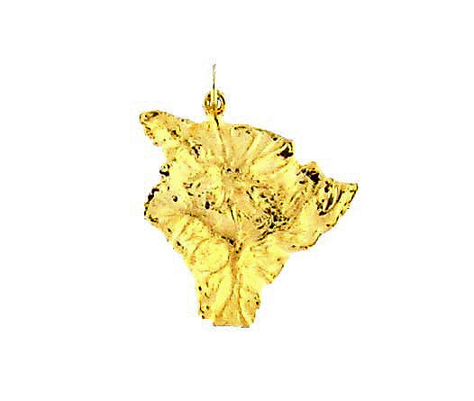 MC-026 Hawaiian Big Island Charm - Small