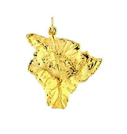 MC-027 Hawaiian Big Island Charm/Pendant - Medium