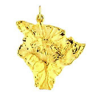 MC-028 Large Hawaiian Big Island Pendant