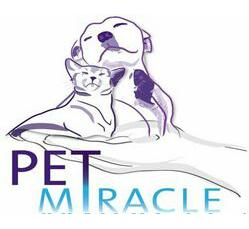 Pet Miracle Appointment - Sat 29th Feb