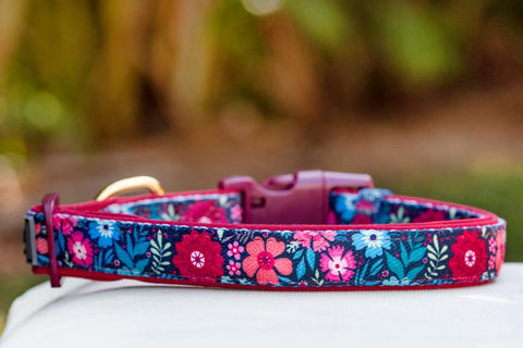 Bright Burgundy Floral Dog Collar