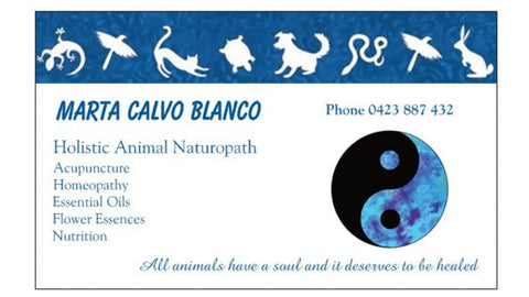 Animal Naturopath Appointment