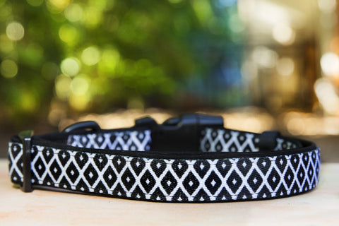 Coopers Black & White Dog Collar