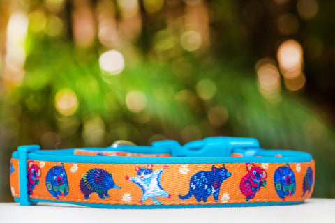 Aussie Animals Dog Collar