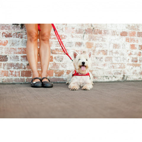 Soft Trainer Lite Leash