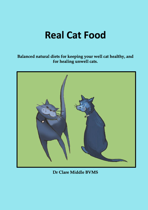 Real Cat Food