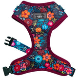 Dizzy Dog Harness