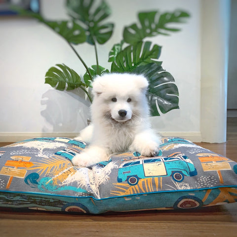 Indie Boho Large Pet Bed
