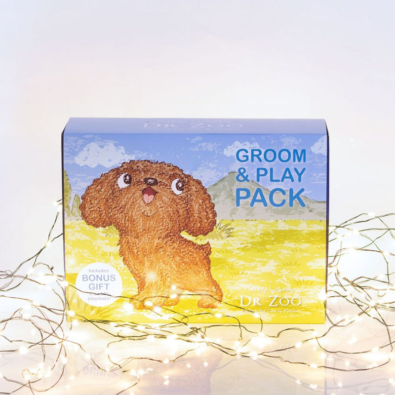 Dr Zoo Groom & Play Pack