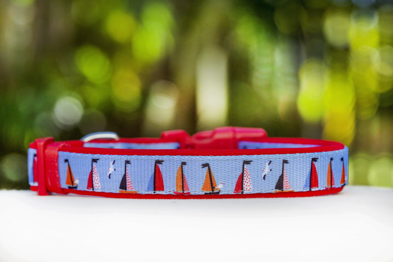 Sail Away Dog Collar