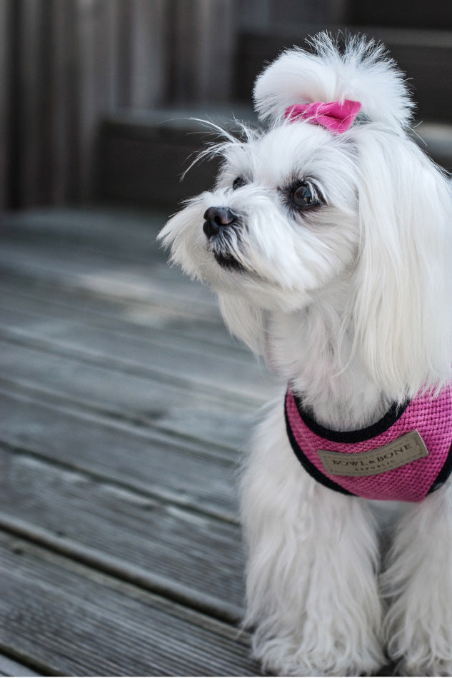 Hundesele 'Candy' (pink) - Luxvuf.dk