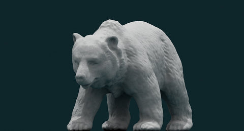 3D Bear - WireCASE