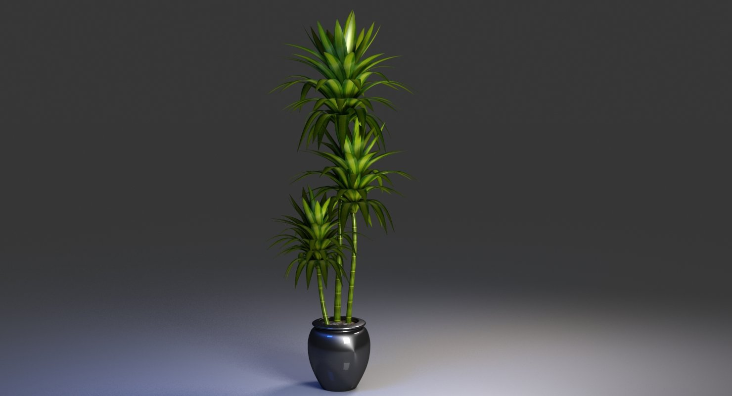 Office Pot Plant 3D Model - WireCASE