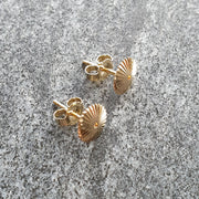 Spiral Burr Earrings - 14ct Gold