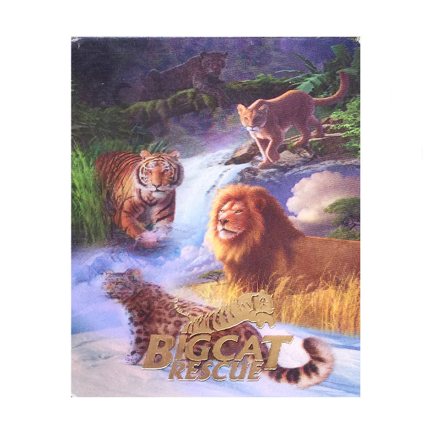 Post Card - 3D Hologram Big Cats