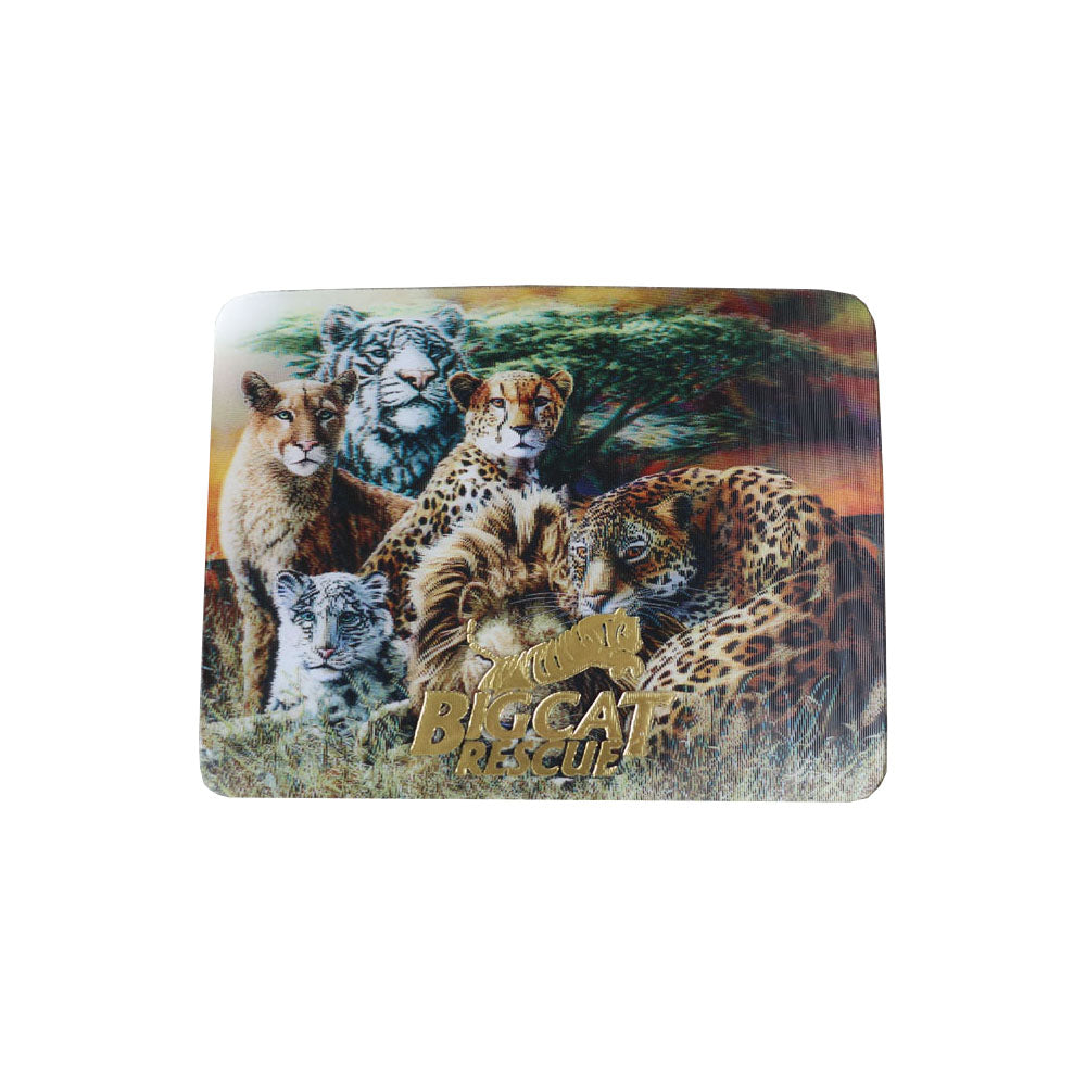 3D Magnet - Hologram Big Cats with Cheetah