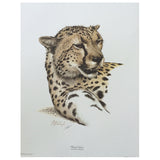 Print - Cheetah by Guy Coheleach
