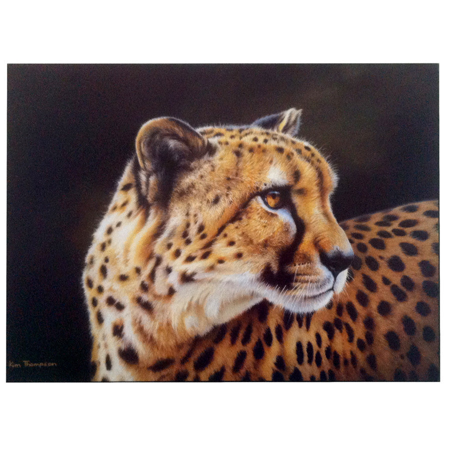 Print - Cheetah by Kim Thompson