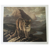 Print - Cougar in Mountains by Charles Frace'