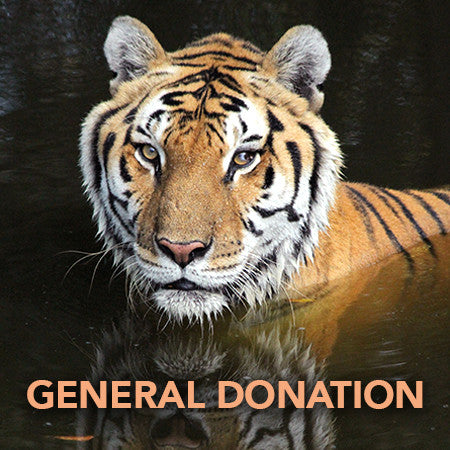 Donation - General Fund