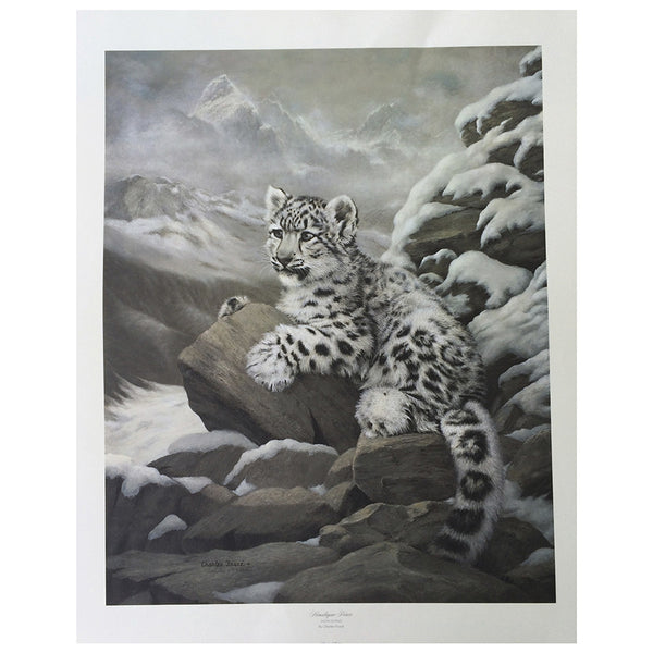 Print Himalayan Prince By Charles Frace Big Cat Rescue